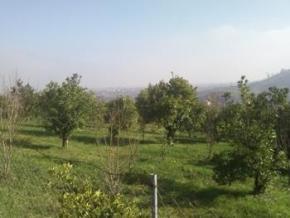 فروش زمین در تنکابن سلیمان آباد 1500 متر