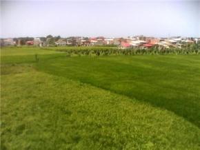 فروش زمین در نوشهر بلوار خیریان 30 متر