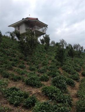 فروش زمین در تنکابن سلیمان آباد 6000 متر