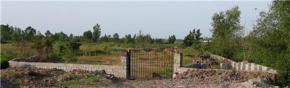 فروش زمین در رشت خمام 2331 متر