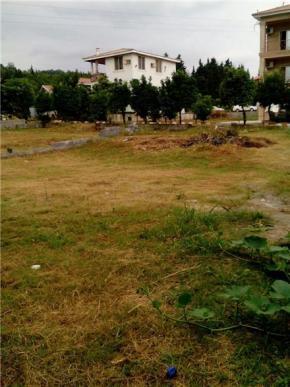 فروش زمین در نوشهر ونوش 400 متر