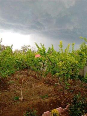 فروش باغ در سهیلیه کمال شهر 600 متر