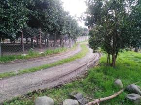 فروش باغ در تنکابن زنگ شاه محله 300 متر
