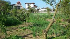 فروش زمین در تنکابن نشتارود 1000 متر