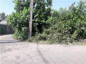 فروش زمین در رشت لشت نشا 200 متر