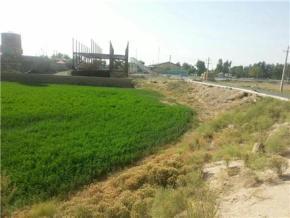 فروش زمین در پیشوا ورامین  10000 متر