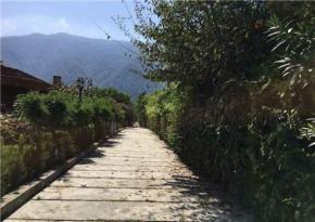 فروش باغ در نوشهر ساحلی 1100 متر