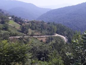 فروش زمین در سوادکوه 500 متر
