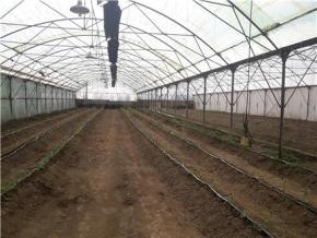 فروش باغ در نهاوند 13111 متر