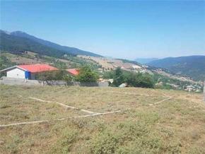 فروش زمین در ساری 320 متر