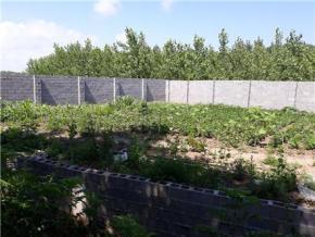 فروش زمین در انزلی منطقه آزادگلشن انزلی 1000 متر