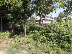 فروش زمین در انزلی زیبا کنار 2000 متر