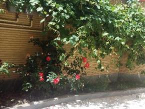 فروش آپارتمان در تبریز پاستور 60 متر