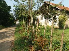 فروش خانه در سیاهکل ازبرم 400 متر