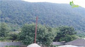 فروش زمین در نوشهر سی سنگان 3000 متر