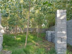 فروش زمین در انزلی منطقه آزاد زیباکنار 250 متر