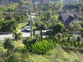 فروش زمین در تنکابن حد فاصل تنکابن رامسر 700 متر