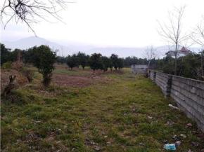 فروش زمین در تنکابن نشتارود 2000 متر