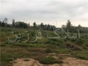 فروش باغ در لنگرود محدوده یکی از روستاها 10000 متر