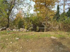 فروش زمین در سیاهکل محدوده یکی از روستاها 1280 متر