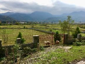 فروش زمین در ماسوله ماکلوان 1540 متر