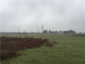 فروش زمین در نوشهر درزی کلا 24000 متر