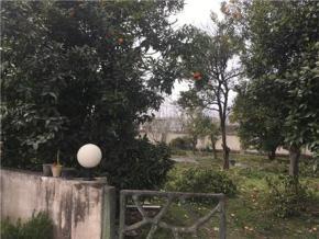 فروش زمین در نوشهر لتینگان 700 متر