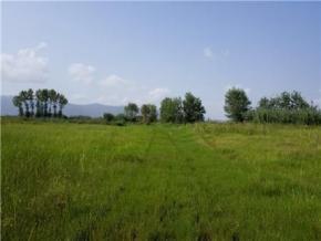 فروش زمین در لنگرود 23000 متر