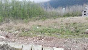 فروش زمین در چالوس شهرک نمک آبرود 490 متر
