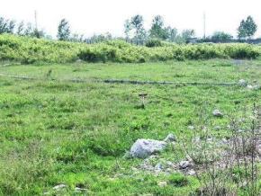 فروش زمین در محمودآباد سرخرود 7000 متر