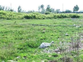 فروش زمین در محمودآباد سرخرود 15000 متر