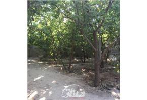 فروش باغ در شهریار 2000 متر