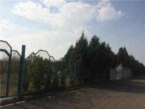 فروش باغ در قزوین جاده الموت-قزوین 2000 متر