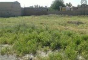 فروش زمین در رودهن 1000 متر