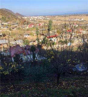 فروش باغ در لیسار حلدومه 23000 متر