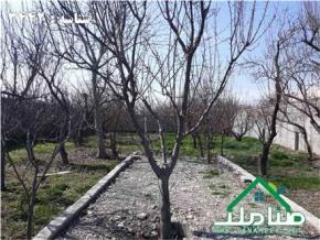 فروش باغ در جاده ملارد ملارد  1000 متر