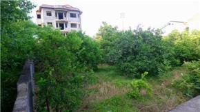 فروش زمین در رامسر سادات شهر 500 متر
