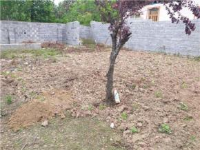 فروش زمین در لاهیجان توستان 204 متر