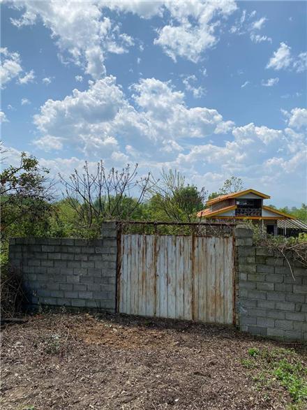 فروش زمین در لنگرود کولاک محله 545 متر