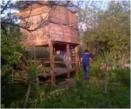 فروش باغ در قائمشهر هتکه لو 2000 متر